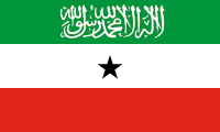 green-white-red with a black star in the middle and a green shahada on the top stripe