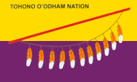 "yellow-purple stripes with a feathered bow and ""TOHONO O"