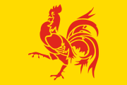 yellow with a red rooster
